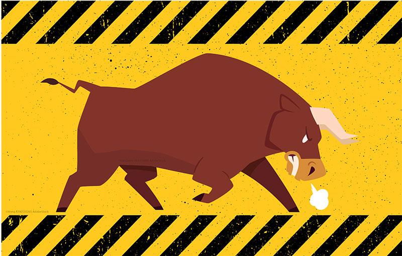 bull market mentality, investing